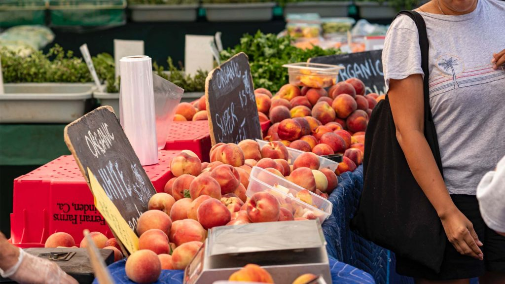 This image has an empty alt attribute; its file name is farmer_market-1024x576.jpg